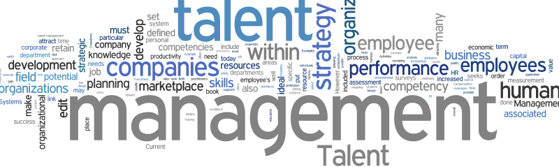 Talent_Management-e1463995760387